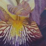 Pastellbild von Eva Jelinek: Bartiris